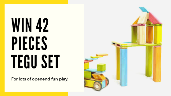 Win: TEGU 42 pieces set Magnetic Wooden Toys